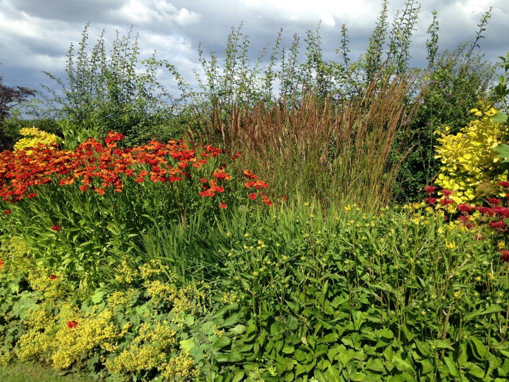 Rural garden with sweeping borders design planting services for Rural garden designs