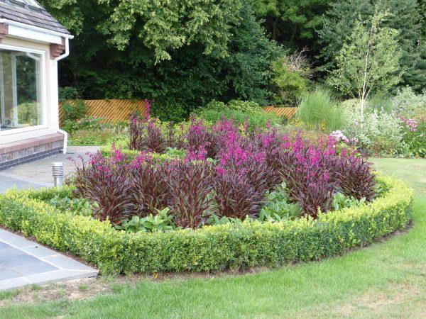 garden designer warwick and stafford