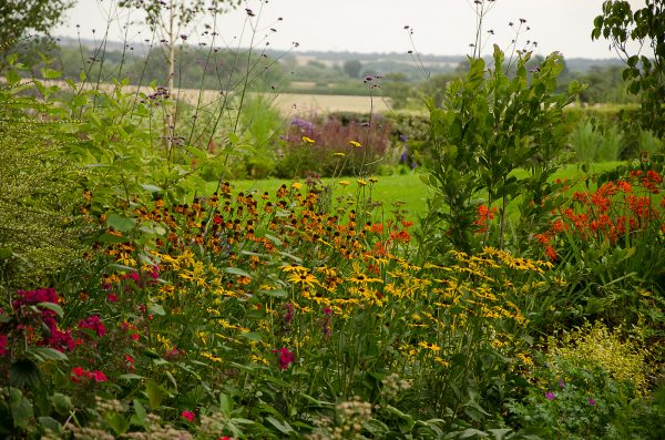 garden design staffordshire