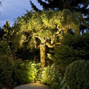 garden designer in derby