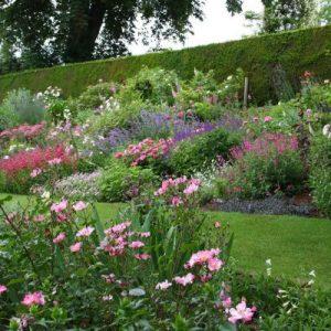 garden design leicestershire