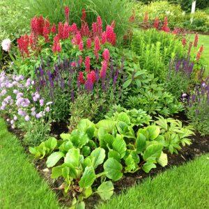 , Planting